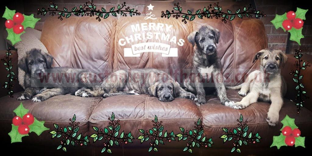 Christmas Delivery- Order Deadline